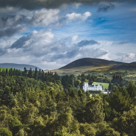 Guest Blog: Enjoy a Doggy Day Out at Blair Castle  image